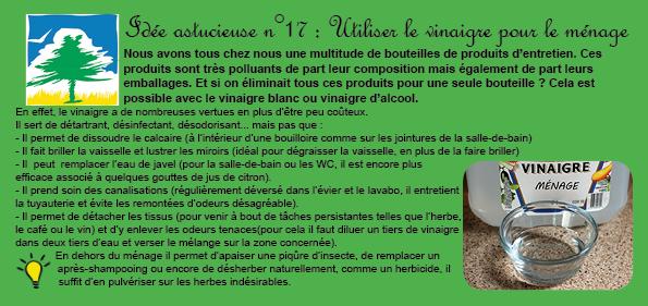 idée 17 vinaigre blanc