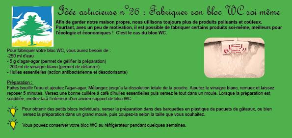 Idée-26-bloc-wc