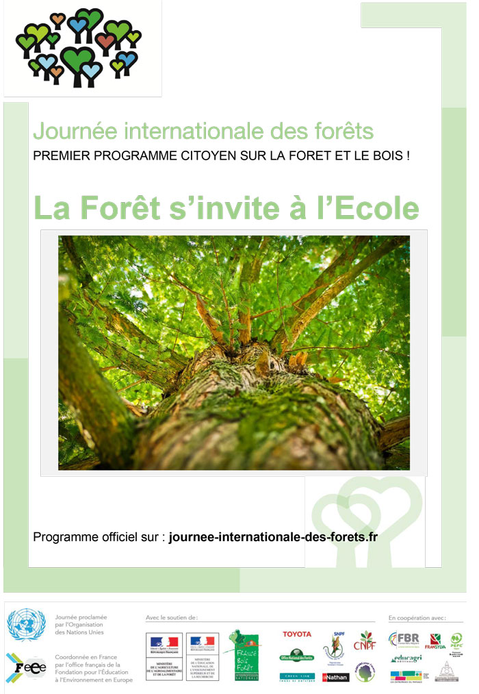 La-forêt-s'invite-a-l'ecole